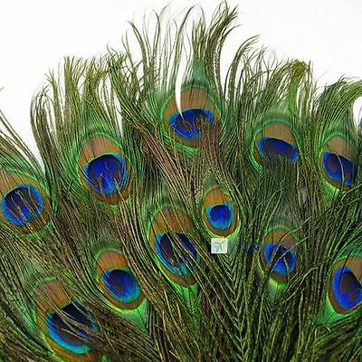 50pcs lots Real Natural Peacock Tail Eyes Feathers 8-12 Inches/about 23-30cm KJ