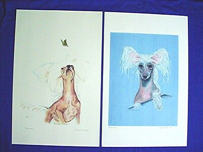 Chinese Crested 2 prints of original pastels portraits by Cindy A. Conter P5 CAC
