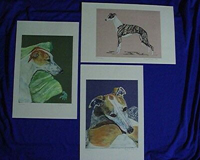 Whippet GREYHOUND IG 3 prints of original pastels portraits b Cindy A. Conter P3