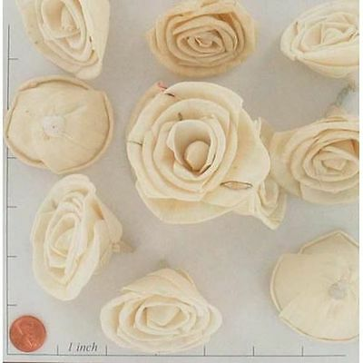 Sola Rose 6 cm Flowers - Lot of 25