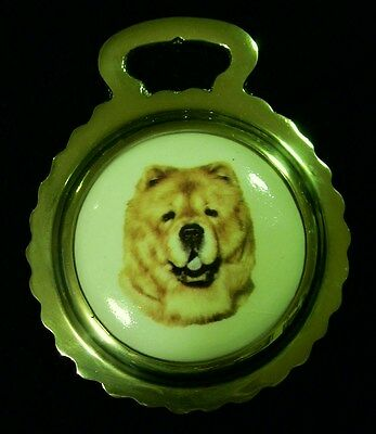 NEW DOG CHOW CHOW Ceramic Horse Brass England CHOW Dog Lover Gift WOW YOUR WALLS