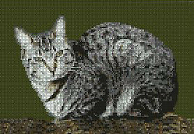 "Tabby Cat Laying Counted Cross Stitch Kit  10"" x 6.75"" 25cm x 17.2cm Free P&P"
