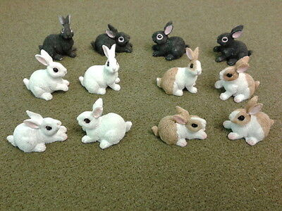 Dolls House Miniatures 1/12th Scale Accessory Rabbit, Guinea Pig & Tortoise Pets