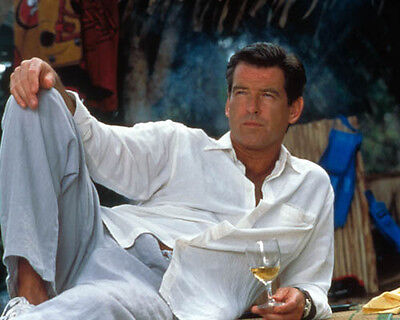 Pierce Brosnan [1019622] 8x10 photo (other sizes available)
