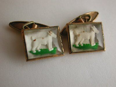 Pretty Antique Gold Capped Cufflinks depicting Terrier Dogs