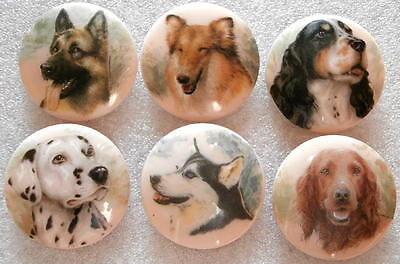 Collection of 6 Czech Glass Decal Buttons #A798 - 6 DIFFERENT DOGS - UNIQUE!!!