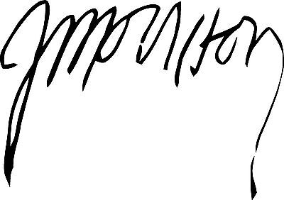 Jim Morrison Autograph Design Decal / Sticker for Guitar, Wall or flat surface