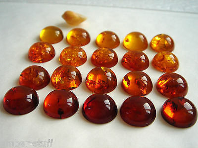 Cognac Baltic amber round cabochon  15mm handcut best quality