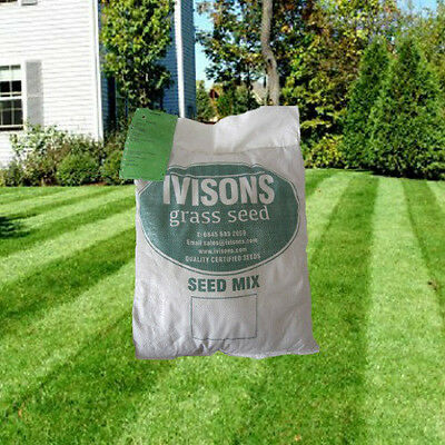 5 Kg Premium Back Lawn Seed Grass Seed Tuff Lawn  Areas Play Areas Pets Ivisons