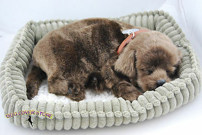 Chocolate Lab Perfect Petzzz Life Like Stuffed Animal Breathing Dog
