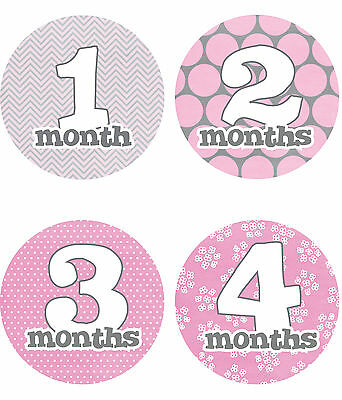 "Baby Girl Monthly Stickers NEW 12 months + Just Born Gray/Pink/White 4"" circle"