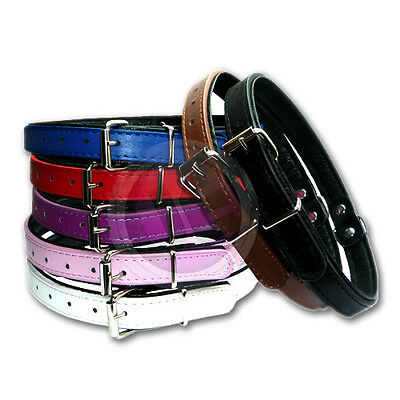 Handmade Soft Padded Classic Leather Collars Dog And Puppy Pet Cat Collar