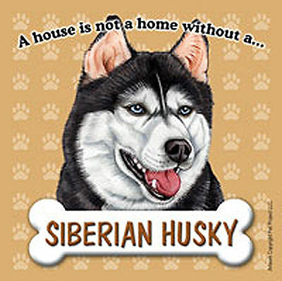 Husky Dog Magnet Sign House Is Not A Home