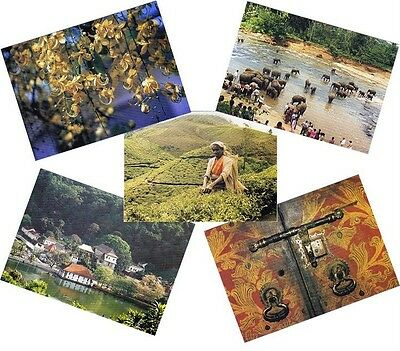 One Sri Lanka Used PICTURE POST CARD with used 5 Stamps, Tea Plucker Elephant