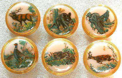 Collection of 6 Czech UNIQUE Glass Decal Buttons #D7 - WILD ANIMALS!!!!!!!!!