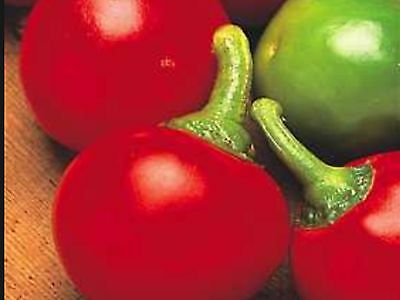 Chilli Large Red Cherry ( 25 Seeds )