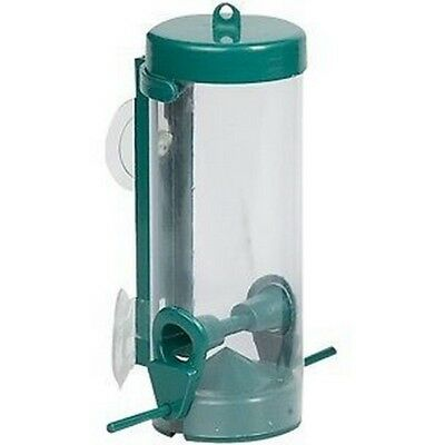 Distributeur De Graines Oiseau De La Nature Tube Feeder Finestra