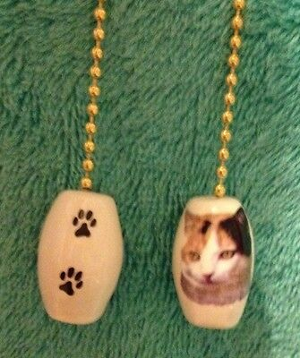 """One Calico Cat Fan Pull With Paw Prints On The Back! 1"""""""