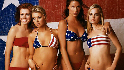 """American Pie movie poster LARGE 27"""" wide by 18"""" high"""