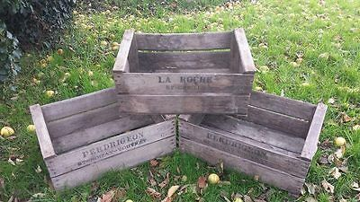 Rustic Old Vintage French Set Of Shelves Bookcase - Set Of 10 Pear Crates Boxes.
