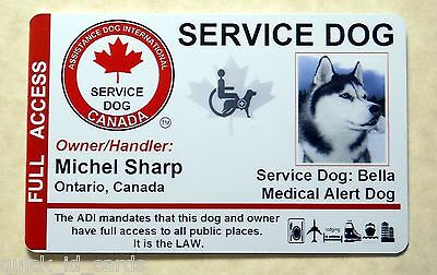 Canada Adi Laws Service Dog / Pet Id Card Badge Id For Service Animal Tag 22