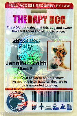 Holographic Therapy Support Dog Id Card For Service Dog Ada Rated 0Thr