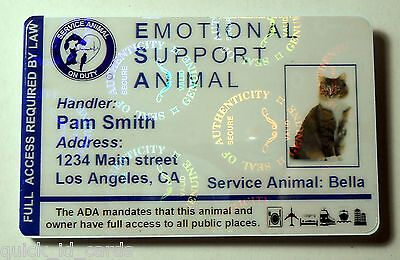 Hologram Feline Emotional Support Animal ID Card / Badge Service Cat  ESA  32