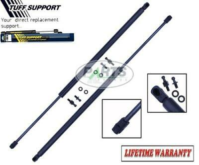 2 Rear Hatch Window Trunk Lift Supports Shocks Struts Arms Props Rods Hatchback