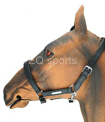 FAST SHIPPING Beautiful Padded Leather Headcollar silver fittings Black Pony
