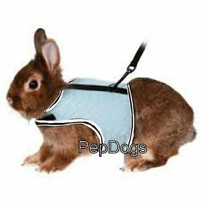 Ware Sporty Jogging Vest Mesh Harness & Lead for Small Animal Travel Leash Walk