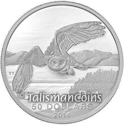 Canada 2014 Snowy Owl Arctic Wildlife $50 Pure Silver Matte Proof Coin Full OGP