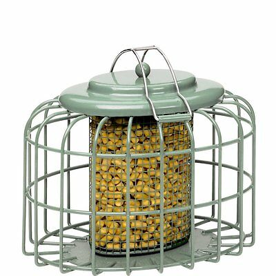 OVAL SUET NUGGET PELLET FEEDER The Nuttery Green Metal Strong | Squirrel Proof!