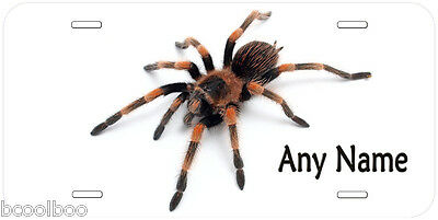 Tarantula Spider Any Name Personalized Novelty Car License Plate P04
