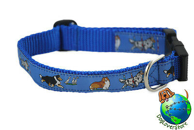 Sheltie Dog Breed Adjustable Nylon Collar Medium 10-16″ Blue