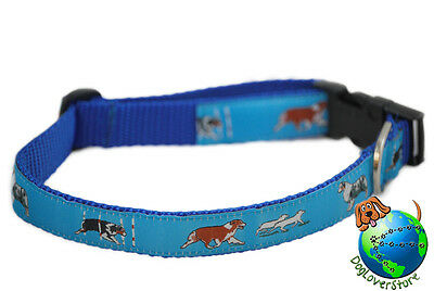 Australian Shepherd Collar Adjustable Nylon 11-19″ Blue