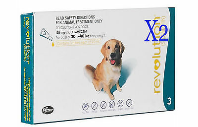 Revolution for Large Dog Teal 20-40 kg Flea Heartworm Ear Mites (6 Packs)