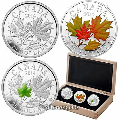 Canada 2014 Majestic Maple Leaves 3 Coin Set $20 Pure Silver Proof Color Jade