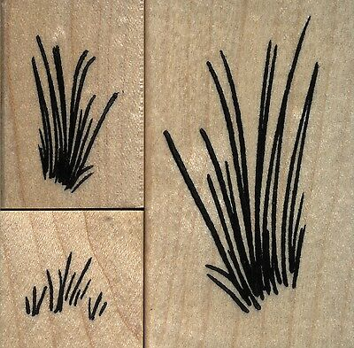 NEW mounted rubber stamp    Grass set of 3 stamps
