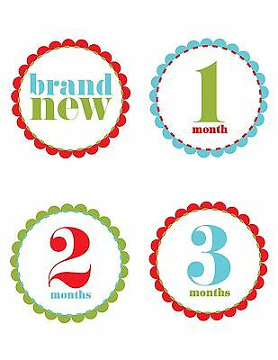 Baby Boy or Girl Monthly Stickers 12 + Brand New Blue/Red/Green