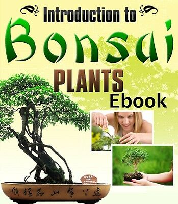 How to grow japanese beautiful bonsai trees with great tips   (eBook-PDF file)