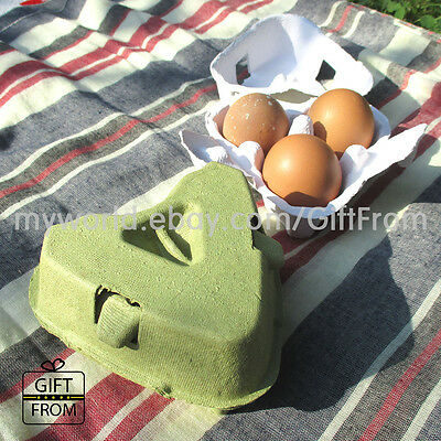 EGG CARTONS (3 Capacity) paper egg tray_soap candle bathbomb packaging
