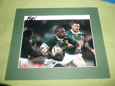 Tendai Mtawarira(Beast) signed South Africa Rugby Union Photograph