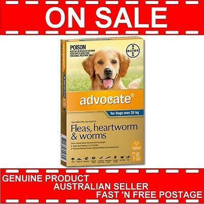 Advocate for Extra Large Dogs Over 25kg 6 PACK Blue