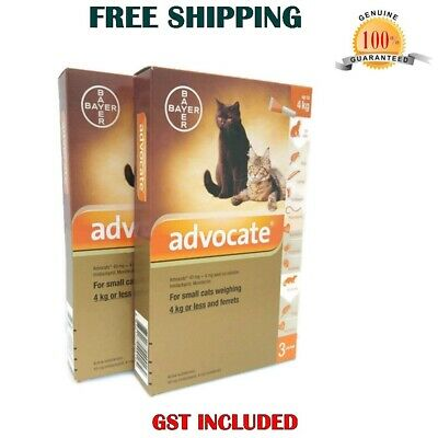 Advocate for Cats and Small Kittens up to 4kg 6 pack Flea and Lice Treatment