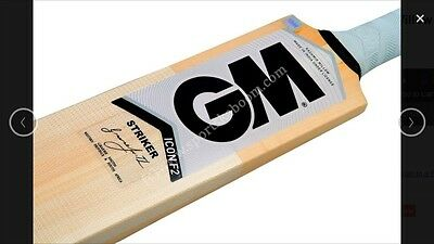 GM Icon Striker Kashmir Willow Cricket Bat (Indoor), AU Stock Free Ship & Extras