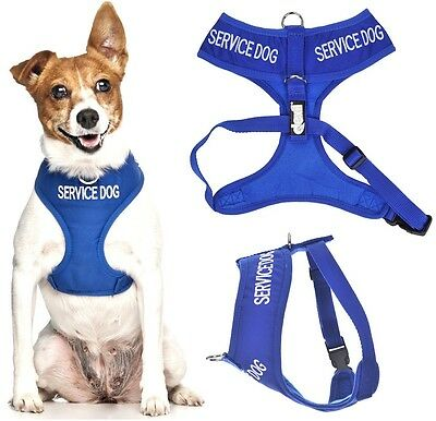 Padded Waterproof Soft Vest Pet Dog Harness SERVICE DOG or 4 6 Foot Luxury Lead