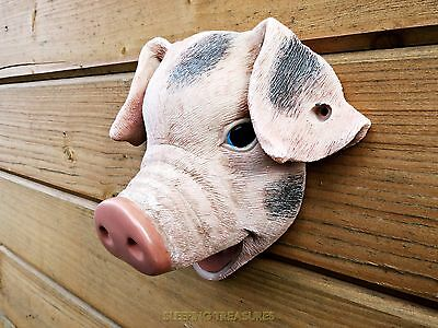 Pig Wall Mounted Bottle Opener, Very Different!