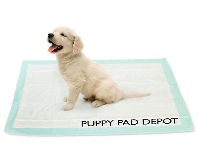 150 30x30 Dog Puppy Training Wee Wee Pee Pads Underpads