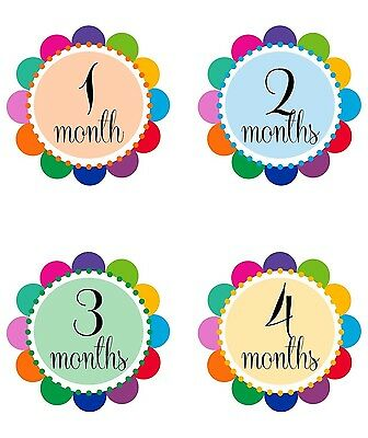 "Baby Girl Monthly Stickers NEW 12 months + Just Born Polka Dots 4"" circle"