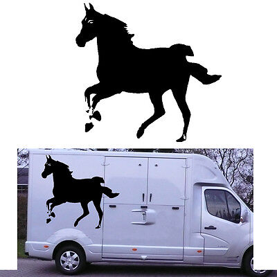 HORSE sticker vinyl cut POTRO. outdoor/indoor. hight quality CABALLO